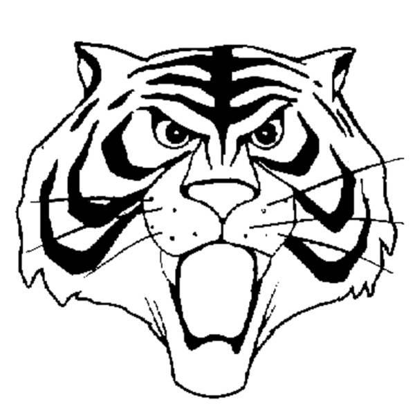Disegni Da Colorare Uomo Tigre Coloratutto Website