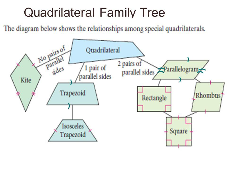Quadrilateral+Family+Tree
