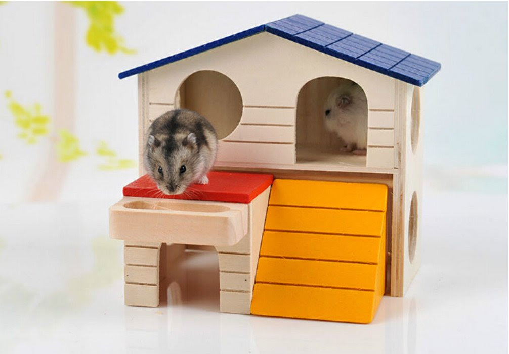 Amazon.com : Pet Small Animal Hideout Hamster House Deluxe Two ...