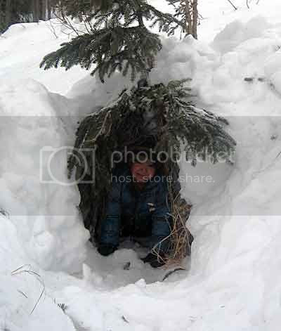 Jed's snow cave with a spruce tree