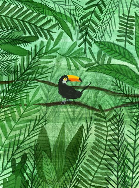 jungle  behance illustration  graphics