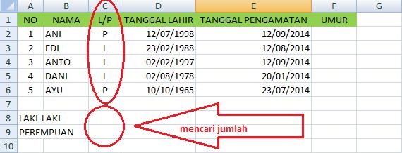 Menghitung Jenis Kelamin Dan Umur Menggunakan Office Excel 2007 Sdn 1 Tugu Sempurna