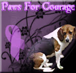 Paws for Courage--River is a poster boy