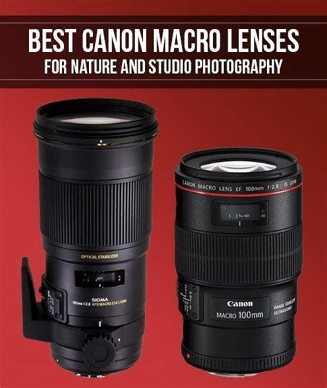 The 25  best Canon macro lens ideas on Pinterest   Nikon