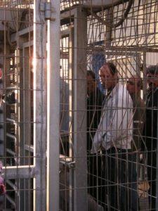 Lavoratori palestinesi in fila all'alba al checkpoint 300, verso Gerusalemme (Foto: Nena News)
