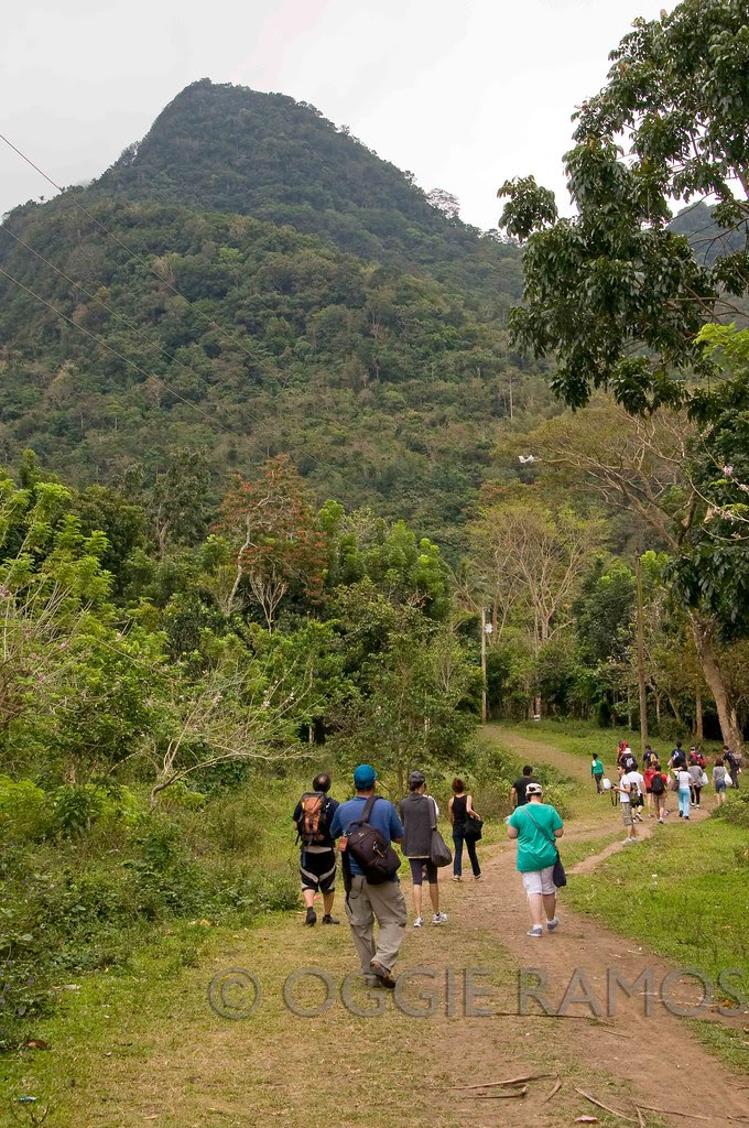 Alamid Coffee Tour - Hikers on the Way
