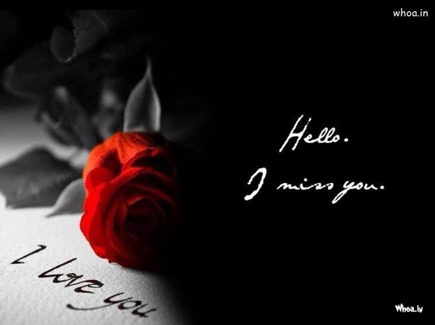 I Love You And I Miss You With Red Ross Hd Wallpaper