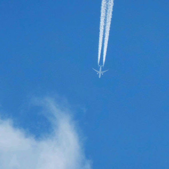 A plane high in the sky