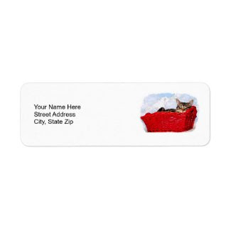 Sleeping Kitten In Bright Red Basket, return address label