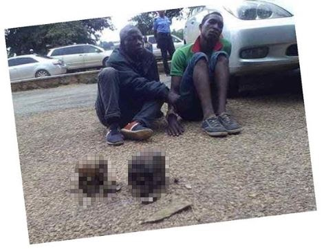 OMG!! Police Arrest Two In Possession Of Human Skulls In Oyo State