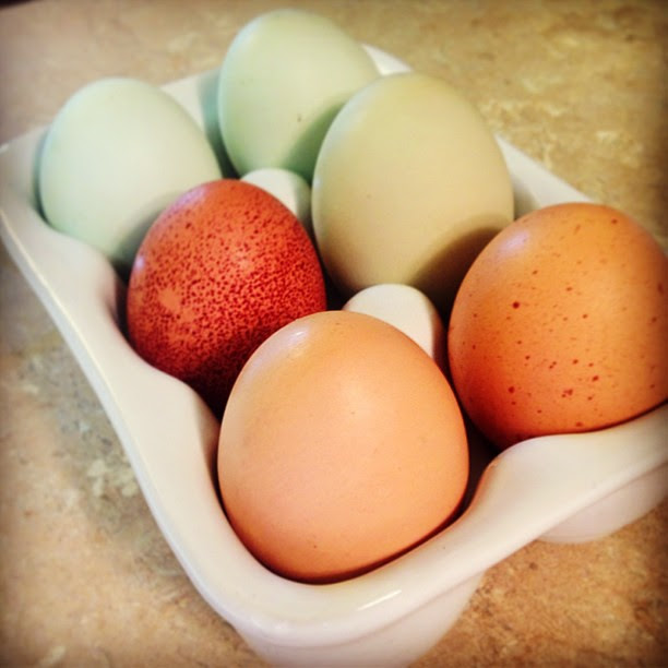 Excited to try these fresh, pastured eggs from a friend of a friend!