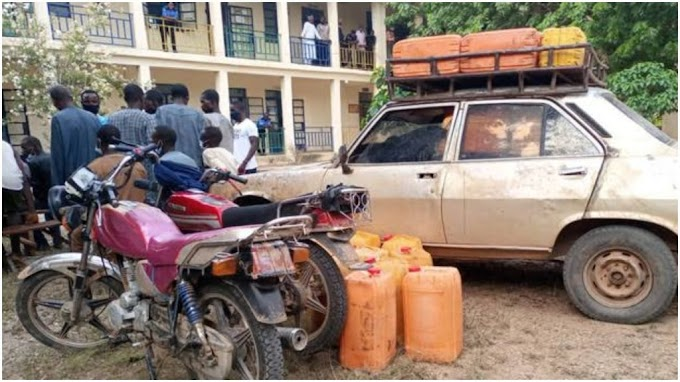 Smugglers Use Peugeot 504 To Smuggle 250 Litres Of Fuel To Bandits In Katsina Forest #Arewapublisize
