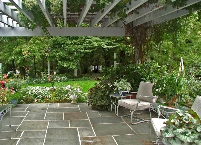 Amazing Patio Garden Ideas Washington