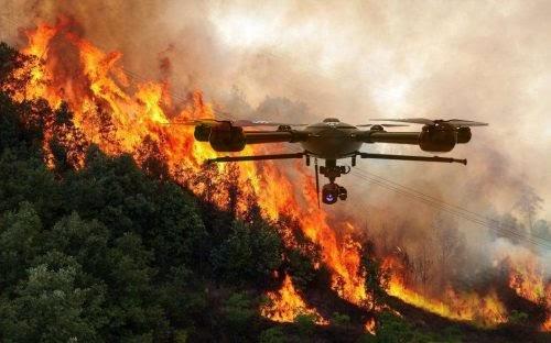 К патрулированию лесных пожаров на Дальнем Востоке предложено привлечь беспилотники - yakutia-daily.ru