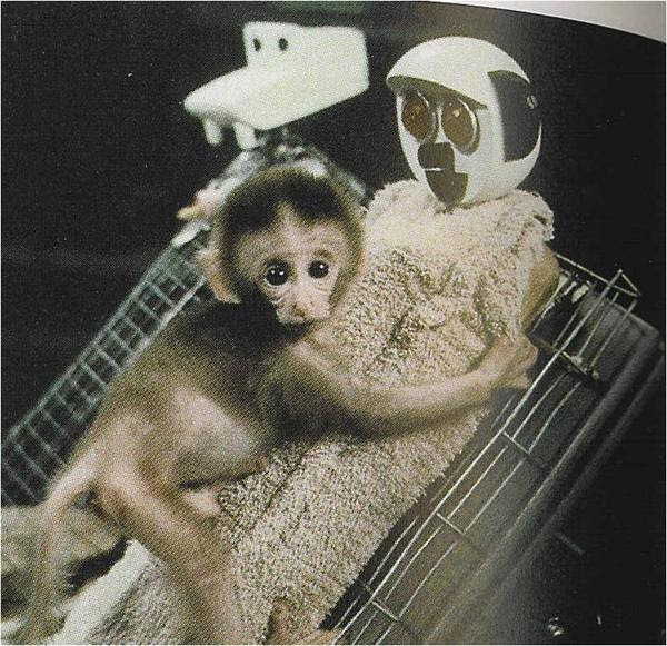 experimentos científicos bizarros amor 7