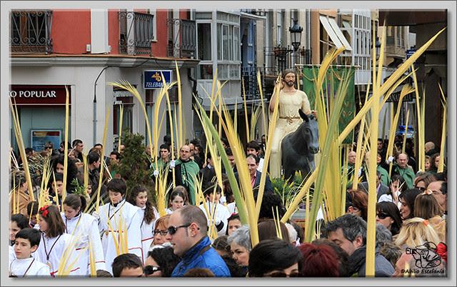 7 Domingo de Ramos en Briviesca