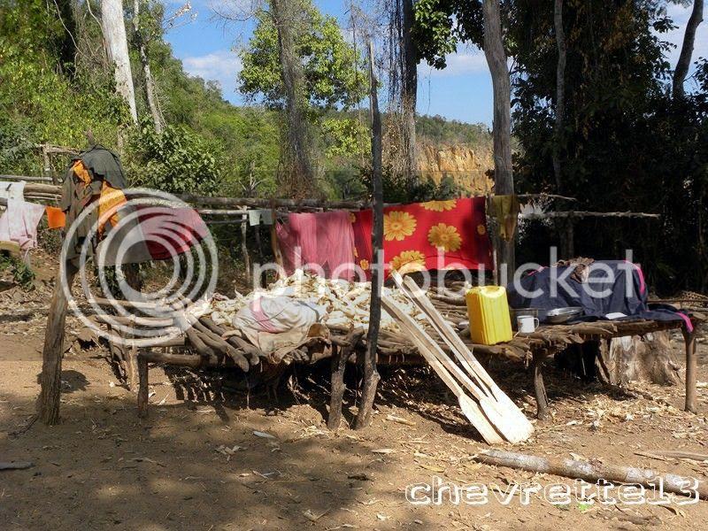 http://i1252.photobucket.com/albums/hh578/chevrette13/Madagascar/DSCN1979Copier_zps9d6eb42c.jpg