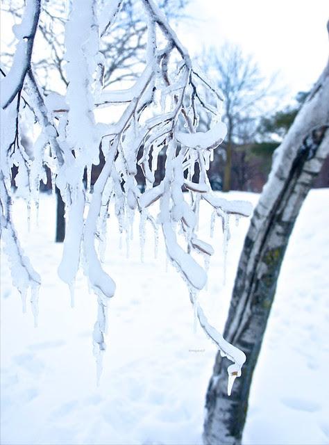 anteketborka.blogspot.com, hiver9