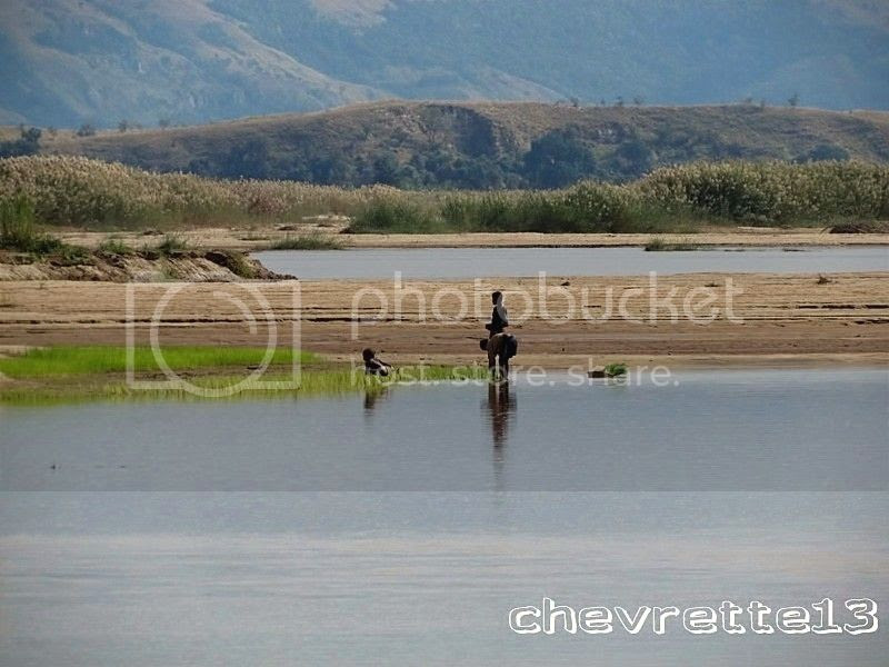 http://i1252.photobucket.com/albums/hh578/chevrette13/Madagascar/IMG_1572Copier_zps513b3d19.jpg