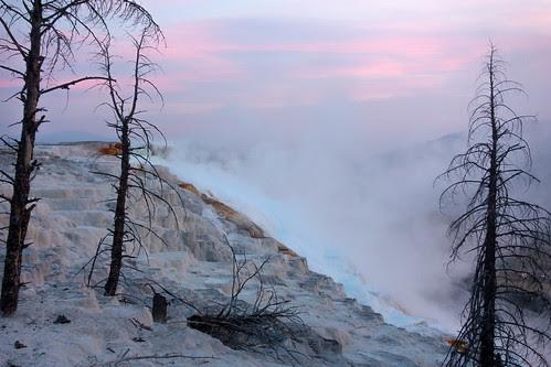 Sunrise at Mammoth Terraces, Yellowstone.