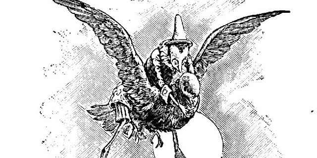 volo pinocchio