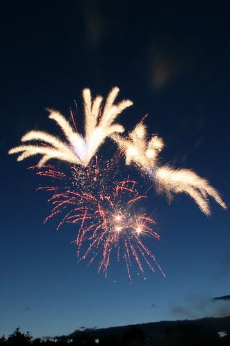 Flower burst fireworks