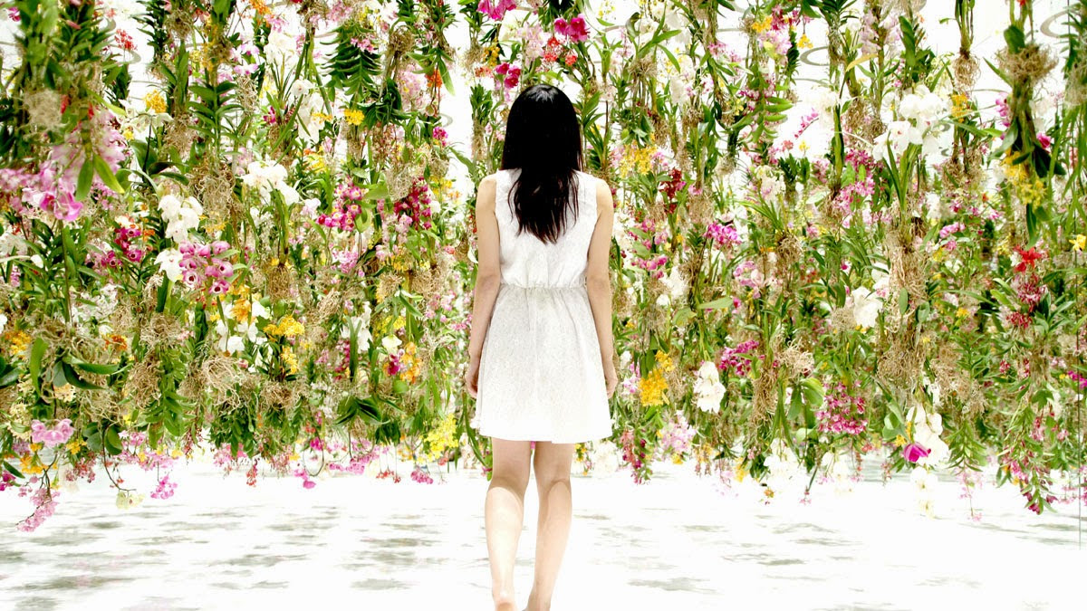 atau  Taman Bunga yang Melayang yaitu sebuah instalasi interaktif dari  Wow, Ada Taman Bunga Mengambang di Jepang