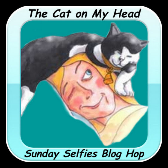 http://thecatonmyhead.com/wp-content/uploads/2015/05/Cat4-001.jpg