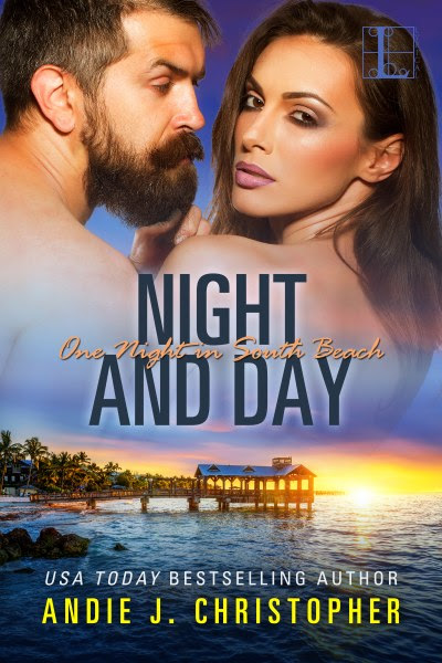 Book Cover for contemporary romance Night and Day from the One Night in South Beach series by Andie J. Christopher.