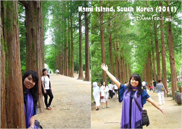 Nami Island 15