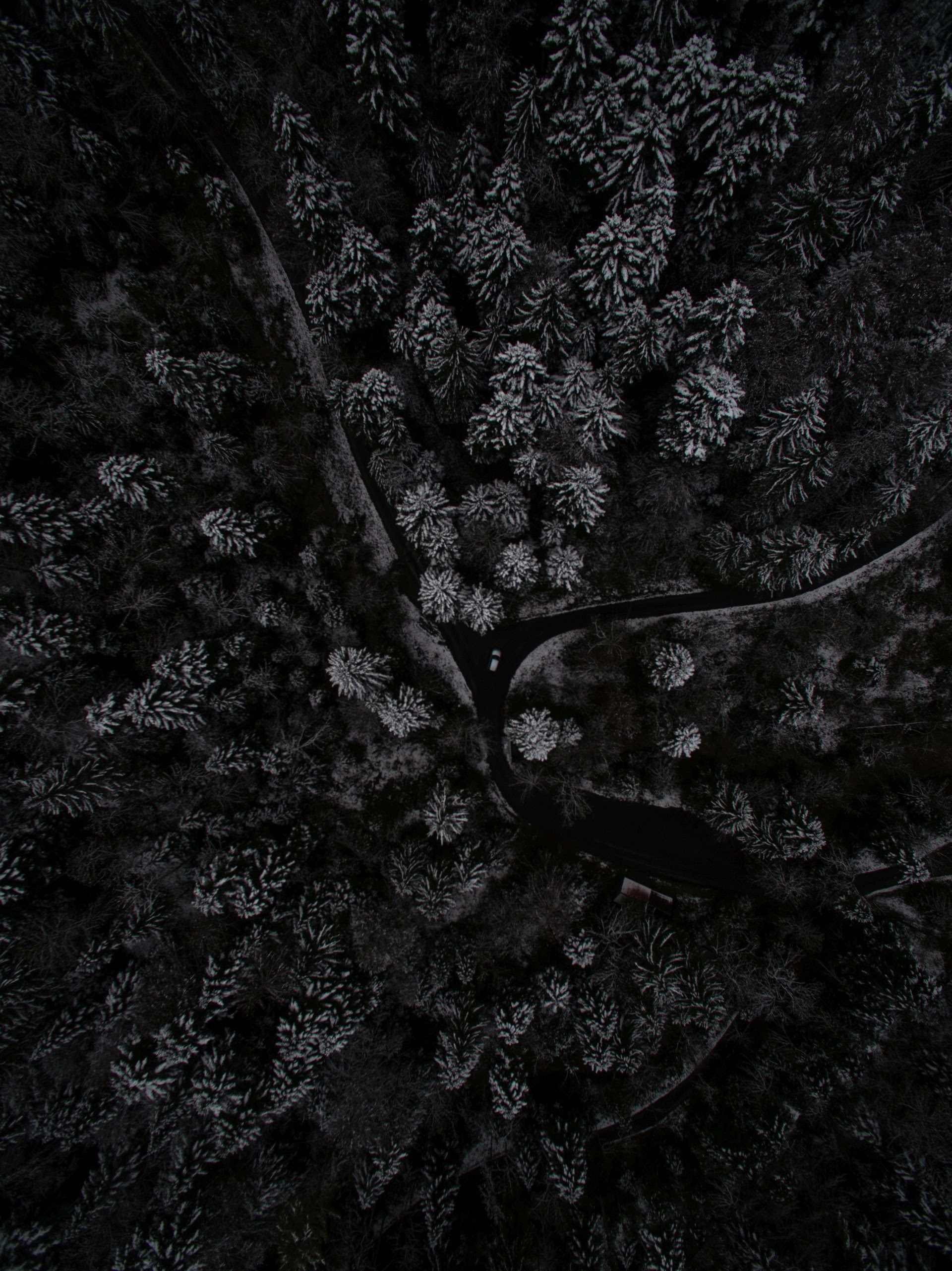 Black Phone Wallpapers (78+ background pictures)