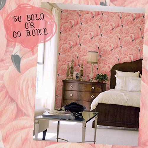 bold_flamingo_wallpaper