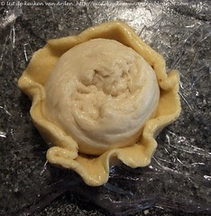 Cookie doug + bread dough for Japanese Melon Pan