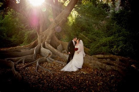 Wedding Photography Perth at Harold Boas Garden & Kings