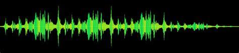 freesound seawhaleseagull  reznikkrkovicka
