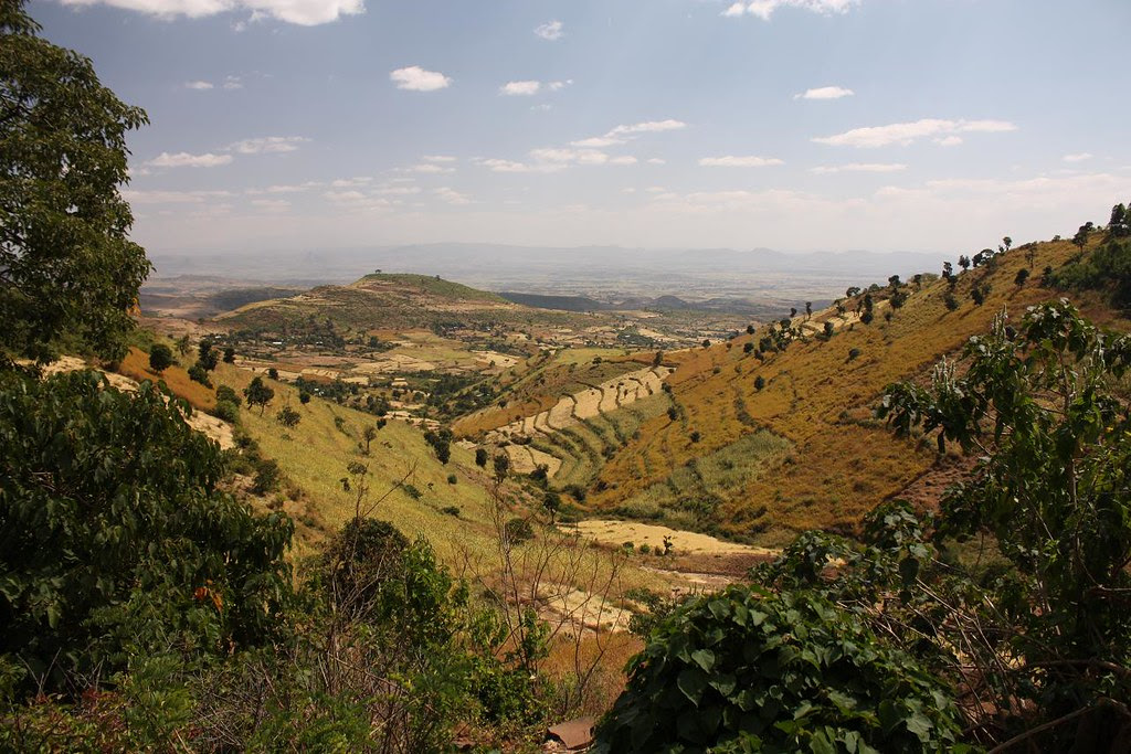 Beautiful undulating farmland in the hills of Northern Ethiopia's Gondar region. Photo by Marta Semu