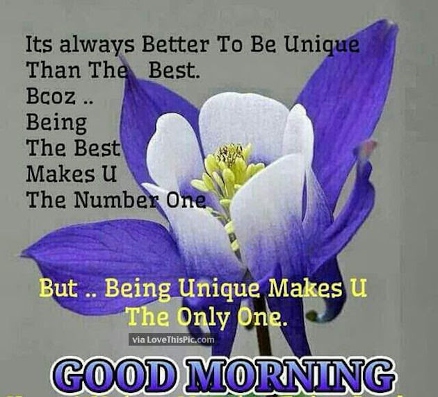 Good Morning Be Unique Today Pictures Photos And Images For
