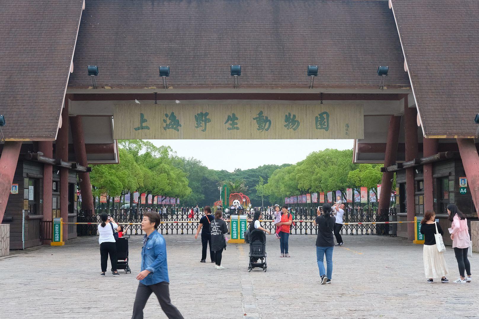 photo shanghai wildlife animal park pudong 2.jpg