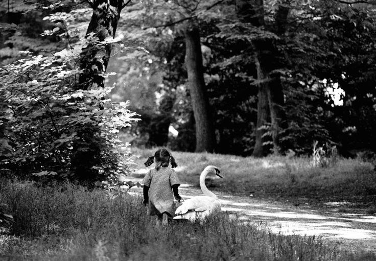 Ferdinando Scianna. Paris. Bois de Boulogne 1978