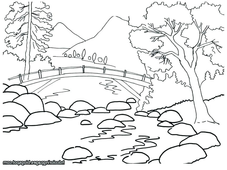 27 Printable Nature Coloring Pages For Your Little Ones   647x863
