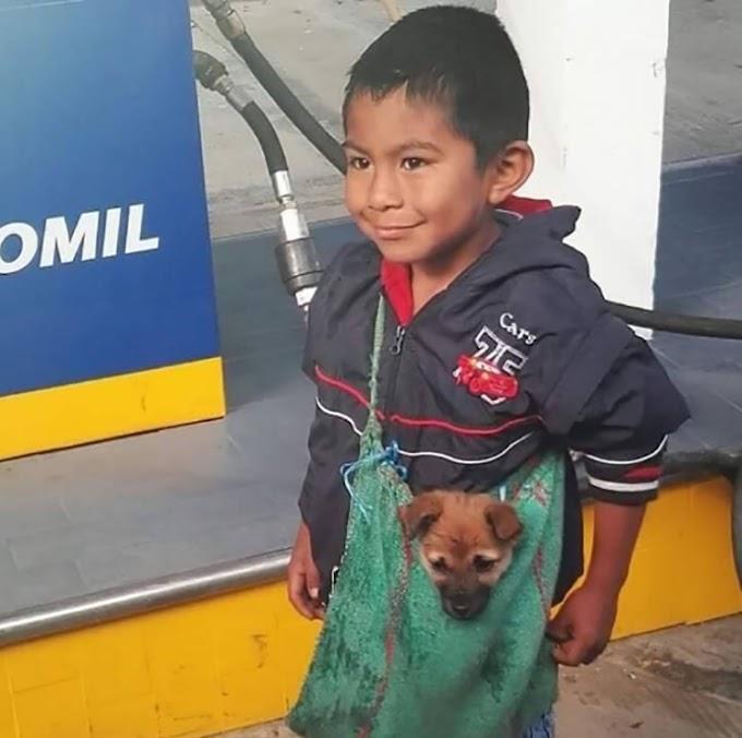 La triste historia detrás de la imagen viral del niño que lleva a su perro del modo más adorable