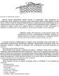 Mihaylova_chashek
