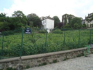 Vie quotidienne de FLaure: Vignoble de Montmartre