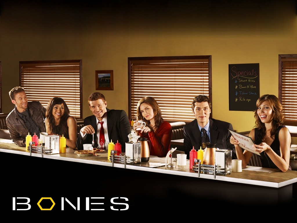 Bones Season 5 wallpaper - Bones Wallpaper (8946466) - Fanpop