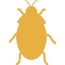 Roach Toronto   EAST WEST PEST CONTROL : pestcontrol, Scarborough, Mississauga, Richmond Hill