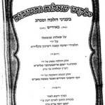 Hate All Non-Jews, Skvere Rabbis Say