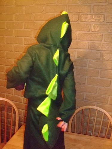 Handmade Dinosaur costume