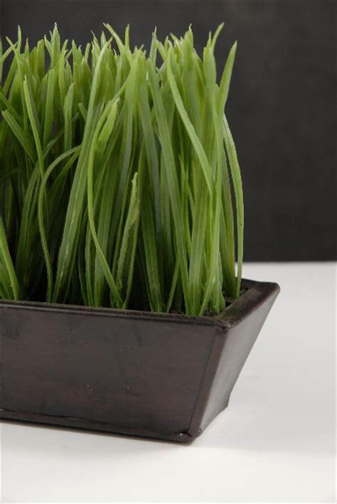 "Narrow & Long Faux Grass Display in Metal Tray 25.5"" long"