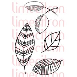 Plein de feuilles