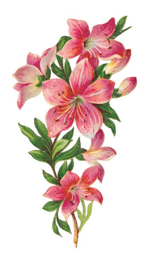 gifs fleurs